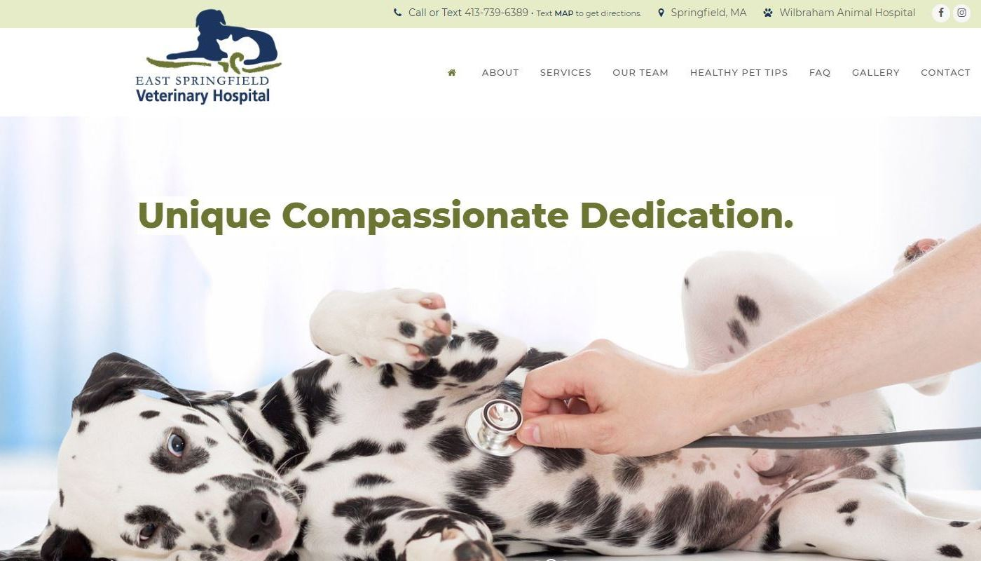 ESV Vet Hospital WordPress Website Design Springfield MA
